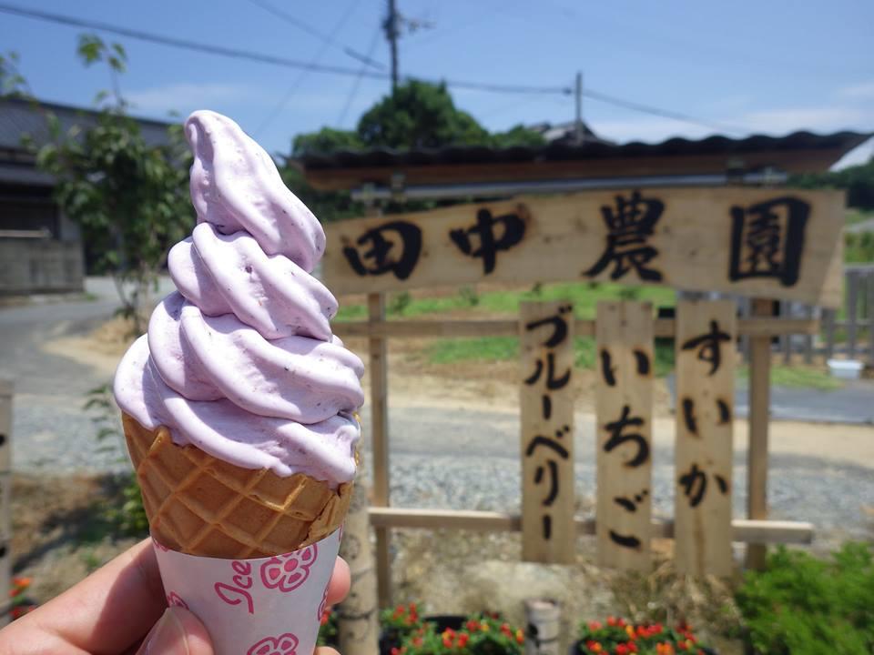 【田中農園】フルーツとソフトクリームの美味しいコラボ(北九州市若松区)